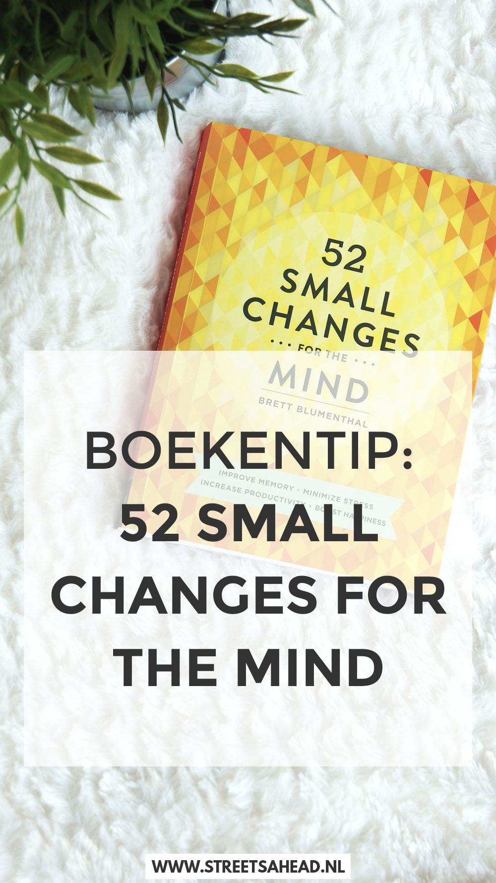 52smallchanges6